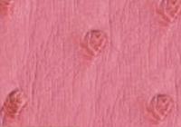indian-pink