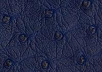 iris-blue